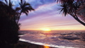 Looping animation of a tropical sunrise at the seaside. The sea splashes seductively and the sun rises above the horizon. The animation is for nature, summer or travel backgrounds. 75960976