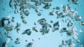 Macro shot of various air bubbles in water rising up on light blue background. 75971537