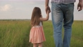 Happy family, child, daughter, dad are walking in park in spring. Kid, father holding hands are walking together across field. Healthy lifestyle, family outdoor walks in countryside. Family values 76131825