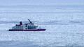 流氷に覆われたオホーツクの海に砕氷船 76144921