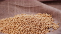 Soybean, High in fiber, top view texture, supplementary food, Protein healthy food, organic soybean, Raw seeds 76149177