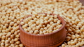 Soybean, High in fiber, top view texture, supplementary food, Protein healthy food, organic soybean, Raw seeds 76149179
