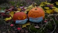 decorating halloween garden 76151963