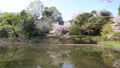 Akashi Castle 76175940