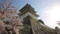 Akashi Castle 76175941