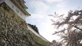 Akashi Castle 76175943