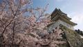 Akashi Castle 76175944
