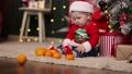 A little kid in a Santa Claus cap examines a bunch of tangerines 76183000