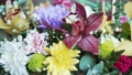 Composition of many beautiful flowers 76190495