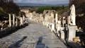 Walking along Curette Street in Ephesus, Turkey 76231972