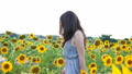 Side view of carefree woman walking among blooming sunflowers. Young girl in dress going through field enjoying freedom and beautiful nature. Scenic landscape at background. Summer concept. Close up 76303583