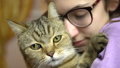 A young woman in glasses presses a cat to her face. British breed cat hugs with a woman. Slow motion 76305523