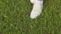 Walking girl in white sneakers on the green grass. 76306536