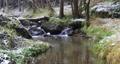 small mountain creek in a woodland, Winter landscape, Czech Republic, Vysocina 76319785