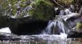 small mountain creek in a woodland, Winter landscape, Czech Republic, Vysocina 76319786