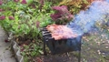 Lamb barbecue is fried on hot coals with smoke in the grill. 76333252