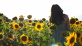 Back view of carefree woman walking among high blooming sunflowers. Young girl going through field enjoying freedom and beautiful summer nature at sunset. Scenic landscape on background. Slow motion 76372594