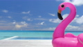 Travel vacation background video. Pool Beach Vacation travel inflatable pink flamingo float toy mattress by pool 76376597