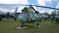 Old military transport aircraft at the military open-air exhibition 76423337