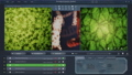HUD user interface of microscopic biological gmo plant cell moving on screen 76479823