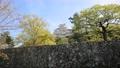 Himeji castle 76512111