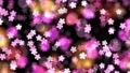 cherry blossom, gleam, gleaming 76549724