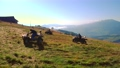 Quad biking in the Carpathians, Ukraine. 76603419