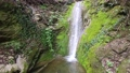Small waterfall with green moss background 76614053