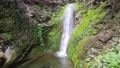 Small waterfall with green moss background 76614054