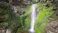 Small waterfall with green moss background 76614055