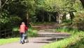 walk, walking, walks 76632839