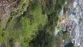 摩天輪 娛樂 主題公園 76671872