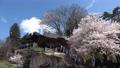 Fukumitsu春節小倉寺Kanzoji(福島縣·Yanatsu鎮) 76718980