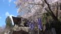 Fukumitsu春節小倉寺Kanzoji(福島縣·Yanatsu鎮) 76718981