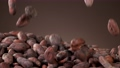 Super slow motion of falling group of roasted cocoa beans pieces. Filmed on high speed cinema camera, 1000fps. 76723382