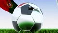 Seamless looping 3d animation of a soccer ball reflecting the flags of Wales and Portugal in 4K resolution 76767754