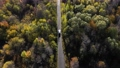 Flying above a white car driving on colorful autumn forest road. Aerial drone point of view 76774906