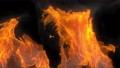 燃燒的火焰 76805072