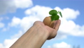hand holding green plant sprout growing in egg, against blue sky background, new life, germinatio, springtime, beginning concept 76871427