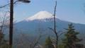 富士山  76927308
