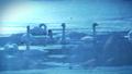 雪が降る氷の池で休み、お辞儀するブルースワン 鳴き声入り 76934461