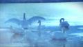 雪が降る氷の池で休み、羽ばたくブルースワン 鳴き声入り 76934470