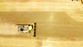 Combine harvesting wheat field gold farm aerial 76956480