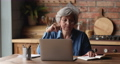 Concentrated interested happy elderly woman studying distantly online. 77003530