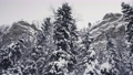Vetlan Mountain in the Urals, Russia, in Winter. Rocky Cliff Surrounded with Pine Tree Forest in Krasnovishersk 77020699