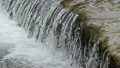 Splashing water over a dam small fish trying to jump up 77021433
