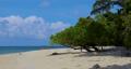 sandy beach, beach, coast 77107447