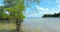 sandy beach, beach, coast 77107656