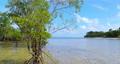 sandy beach, beach, coast 77107657