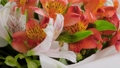 Close up: bouquet of orange and white alstroemeria flowers on rotating surface 77113226